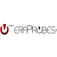 TeraProbes